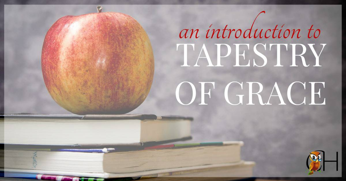 Tapestry of Grace is a curriculum created by a mother of 6 who was desperate to bring some sanity into her school day using history as the backbone.