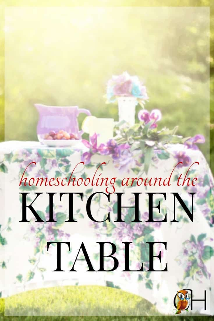 The kitchen table homeschool is my style of homeschooling. We have a small house and plenty of children so homeschooling ends up occuring throughout the home.
