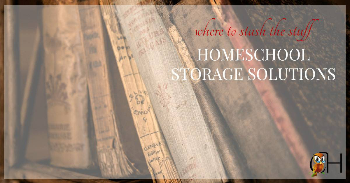 Homeschool storage issues can be difficult to work around. The number of books that we use are astronomical and growing by the day.