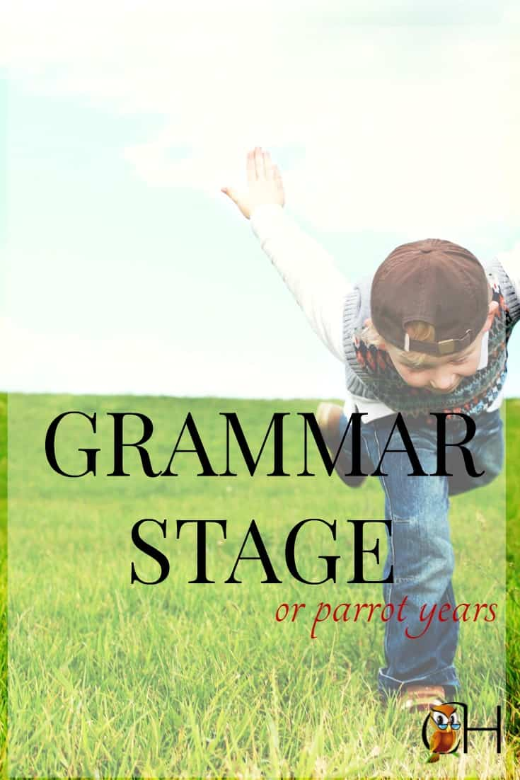 Swore just to hear your angelic three year old repeat you verbatim? Welcome to the grammar stage or parrot years of a child's life.