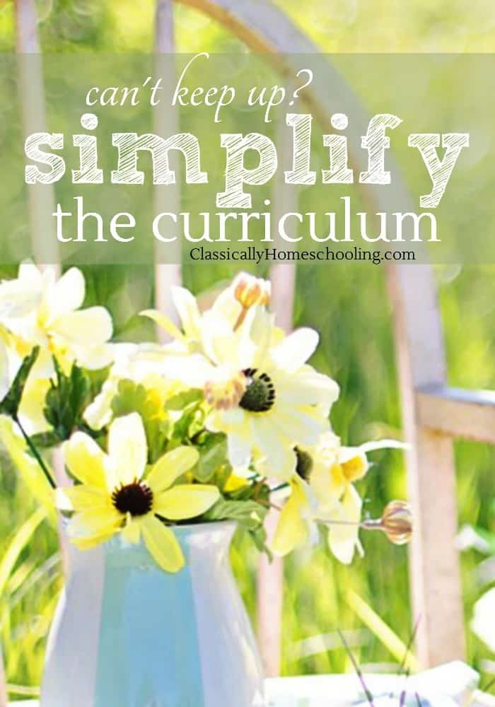 Lays out a manageable way of doing simplifying the curriculum, one that I'd stumbled my way to over the years.