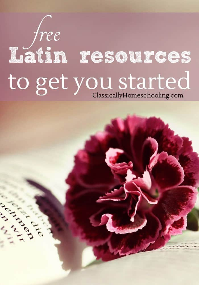 Latin can be an expensive subject to add to the homeschool. There's workbooks, teacher's books, DVD's, classes, and more. Sometimes we need to get started with Latin in the classical homeschool without a huge expense. That's why I've found free Latin resources to help you on your way!