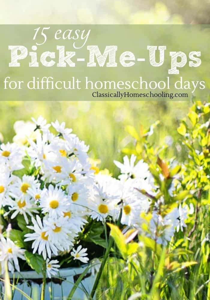 I don't know about you, but I have difficult homeschool days fairly regularly. The day starts out great. I enjoy chatting with my husband over a cup of coffee. Then a son comes running in to tell us... the toilet's plugged and a toddler painted his sister's room with fingernail polish. It's a day I need an easy pick-me-up!