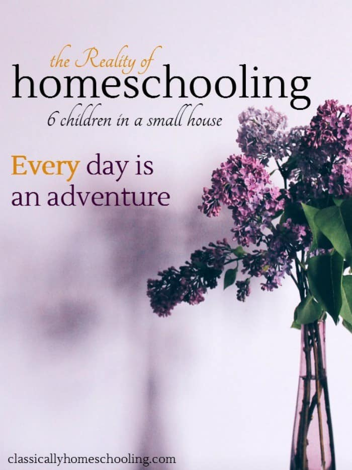 A dedicated room for my homeschooling is one of my favorite dreams, but it simply is not possible at this time. We're a larger family in a smaller home.