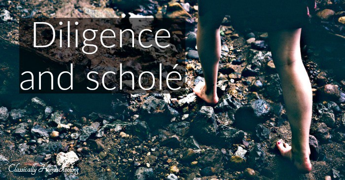 diligence and schole fb