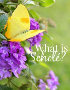what is schole