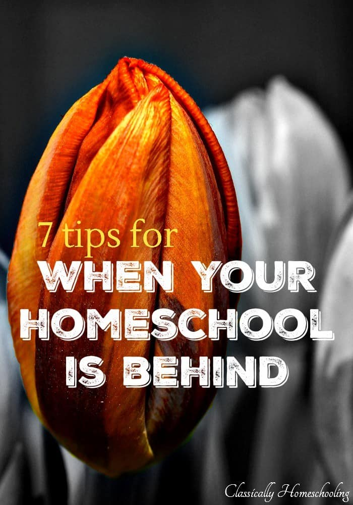 Have you ever woken up one morning and realized your homeschool is behind schedule? You've been saying tomorrow will be a better day one day too many. I think it happens to all of us.