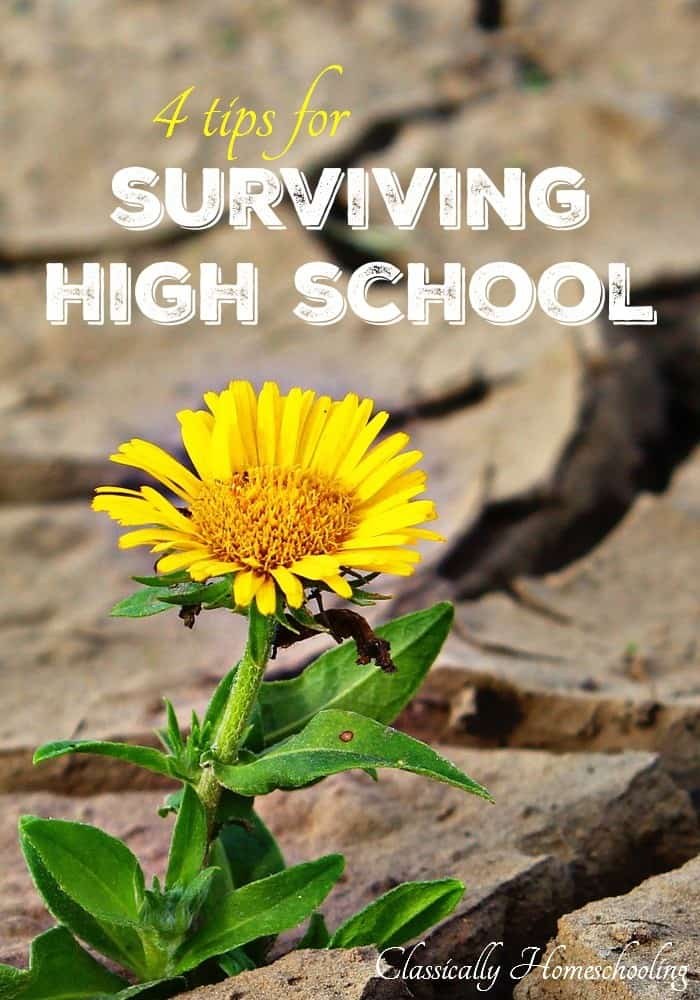 High school is intimidating. I don't know about you, but I spent the summer before my oldest start 9th grade panicking and planning. Would I fail my son? Would he get into college? Would we survive homeschooling high school?