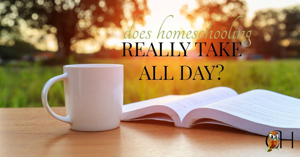 It's amazing how many people believe homeschooling must take all day. After all public school kids are in school 9 to 3. However homeschooling isn't the same.