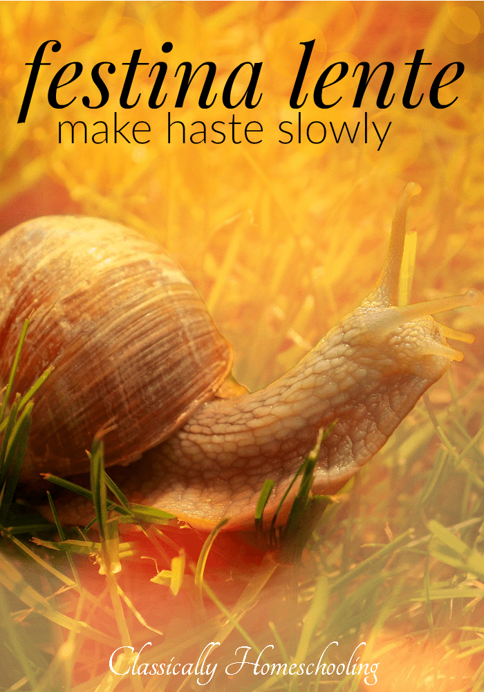 make haste slowly and aim for mastery