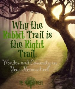 http://www.theplantedtrees.com/2016/09/why-rabbit-trail-is-right-trail-wonder.html