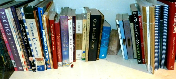 Here's the shelf I store our general homeschool books, as well as books I don't want tossed into the crates. Library books have been known to disappear in the crates.