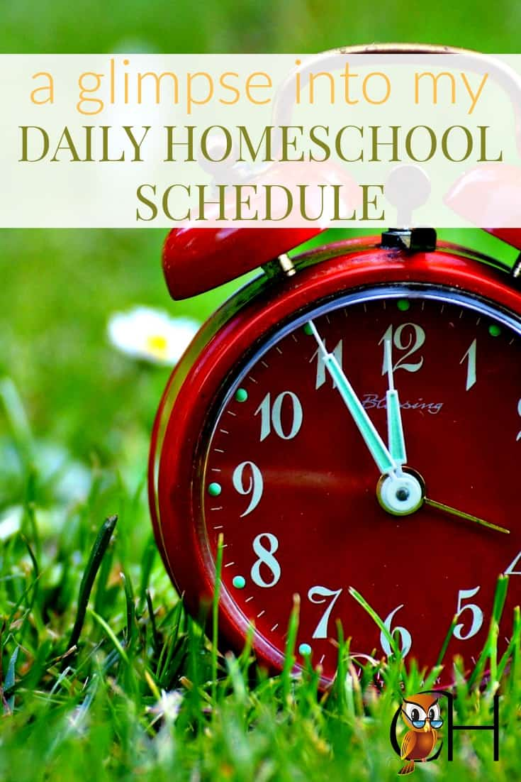 Sometimes it helps to see how another family schedules their homeschool day, so I thought I'd write about my homeschool daily schedule.