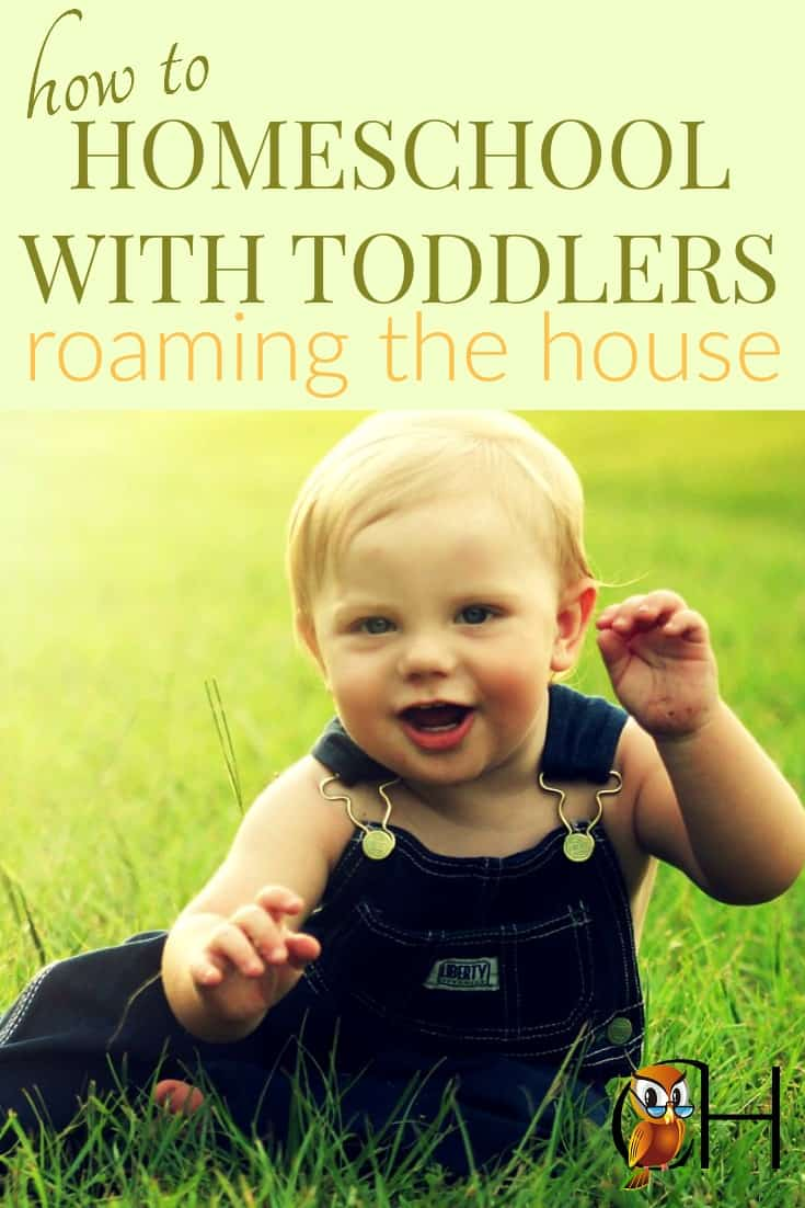 Homeschooling toddlers is tricky. You sit down to teach a phonics lesson. Your toddler wanders into the bathroom to smear toothpaste all over the walls. Click to learn how to homeschool with toddlers on the loose!
