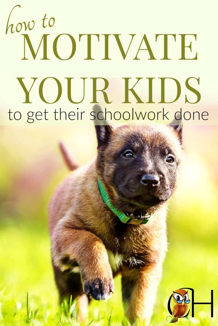 Nothing is worse than sitting down a kid who refuses to work. They moan and groan. So use this simple trick to motivate your kids to get their schoolwork done. Click to find out more!