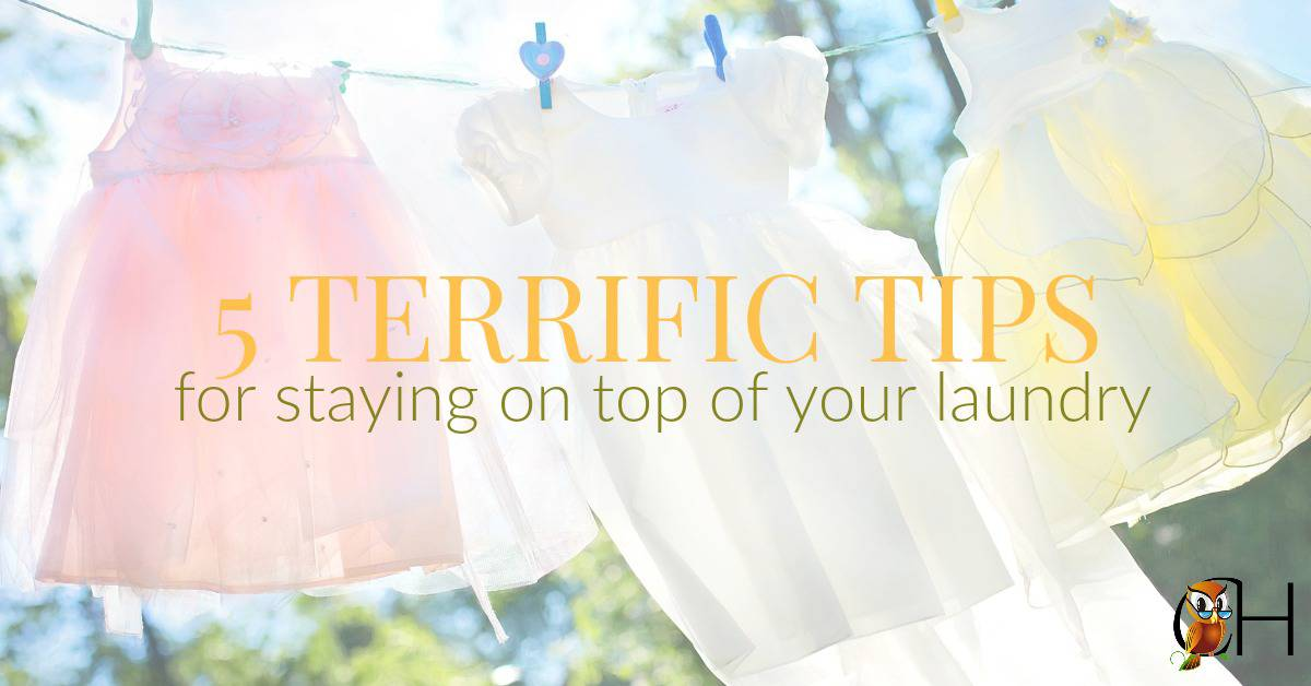 Ever walked into the laundry room to find a pile taller than Mt. Everest? It's hard staying on top of your laundry so use these terrific tips to do just that!