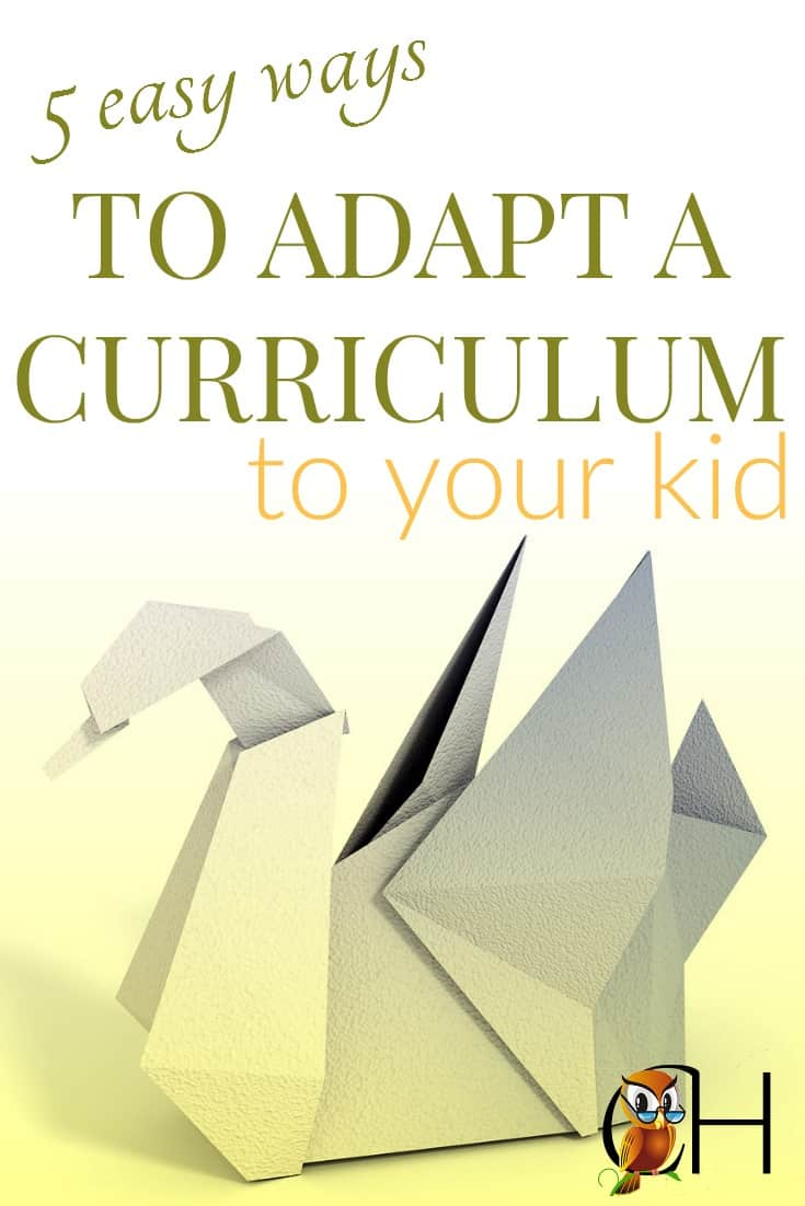 Instead of attempting to find the perfect curriculum for each child, learn to adapt curriculum to your child.