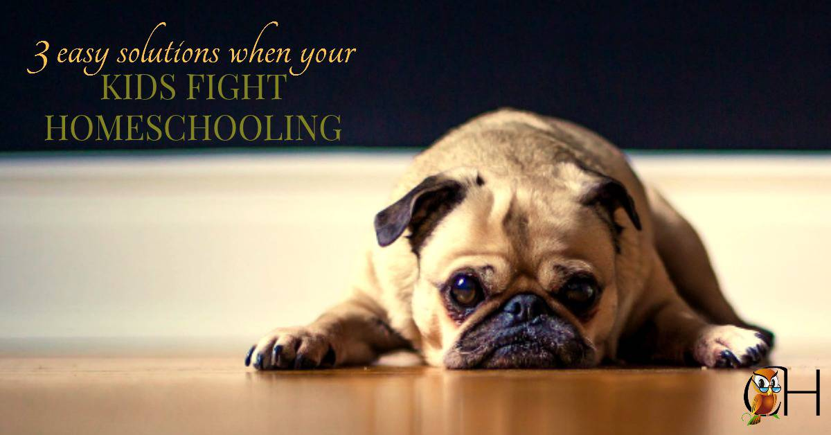 What do you do when kids fight homeschooling? Here are 3 easy solutions for you to try. Just click to learn more!