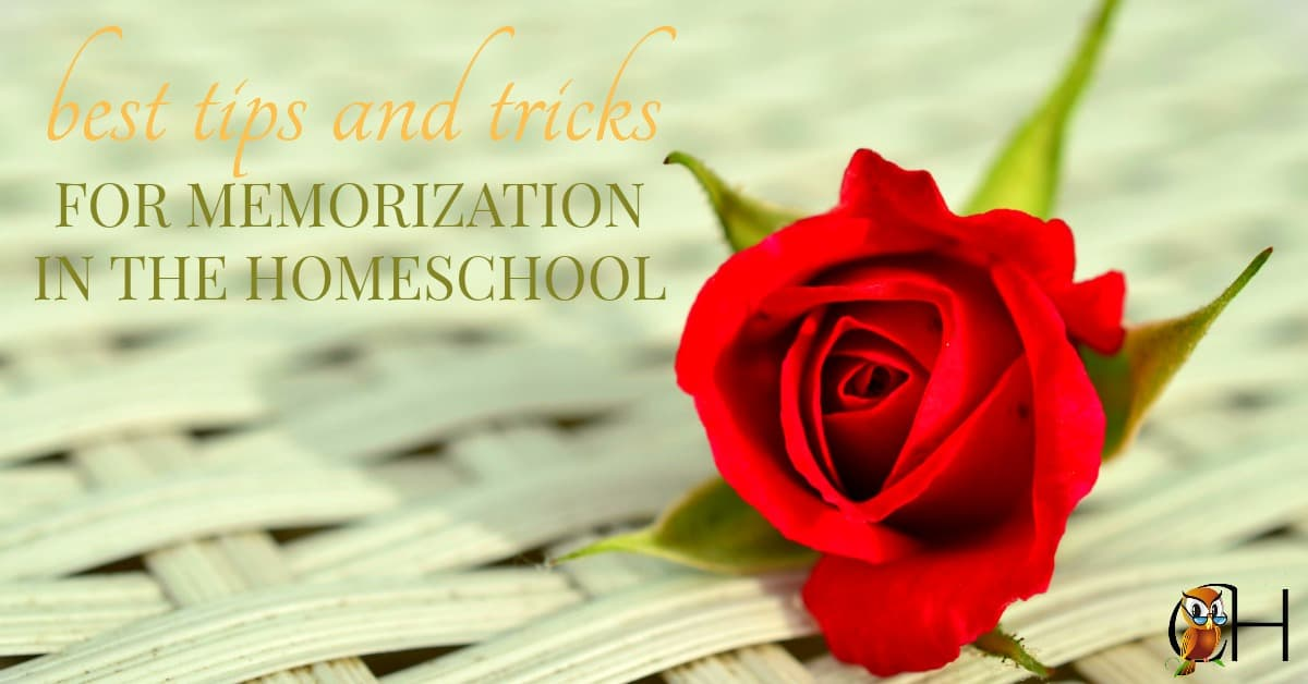 Are you looking to add memorization to your homeschool? Here are the best tips and tricks for memorization in your homeschool.