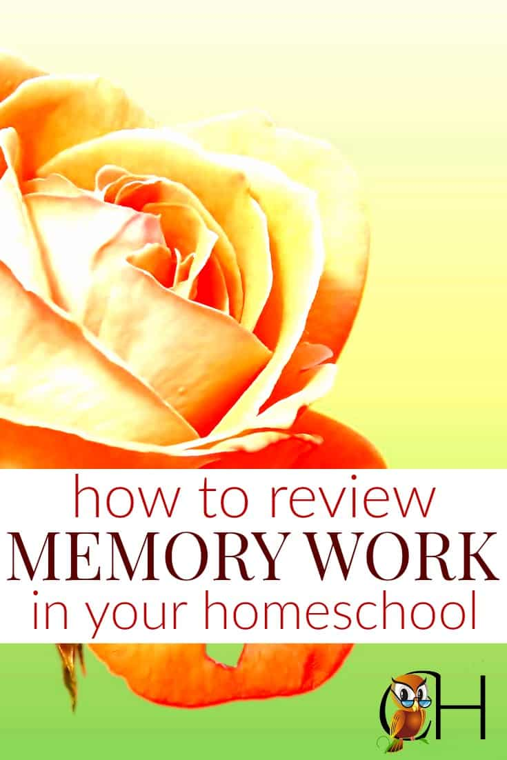 Kids have memories like sieves. But there is a way to get kids to retain information. Review it like crazy! Click to learn the best methods.