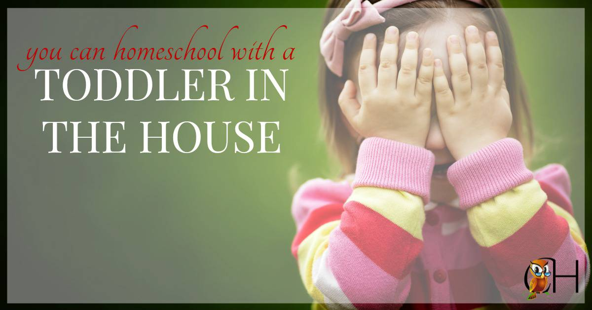 Do you homeschool with a toddler who delights in unrolling toilet paper? Been there, done that! Here's how you homeschool with a toddler in the house.