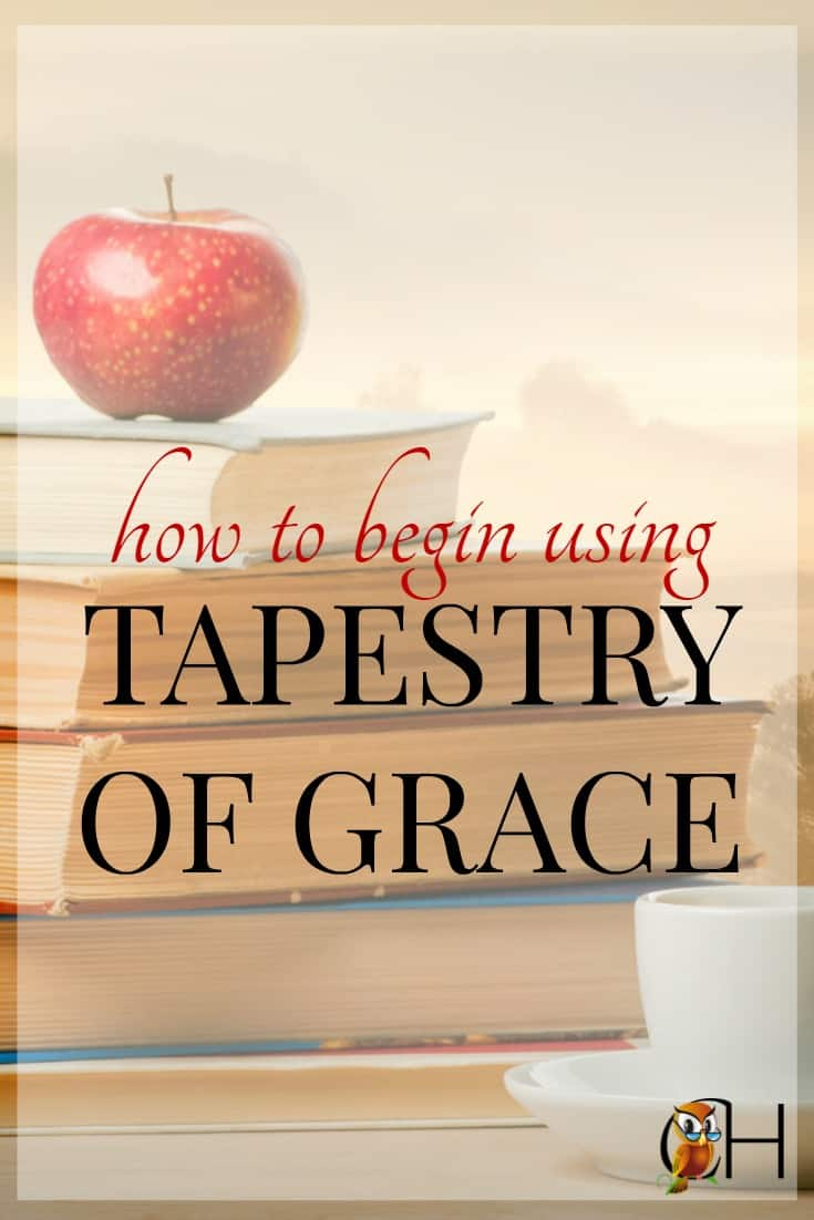 Conquer the Tapestry of Grace fog! Learn how to begin using Tapestry of Grace in your family with pointers, advice, and schedules.